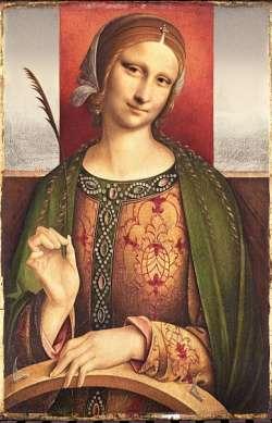 Catarina Mona