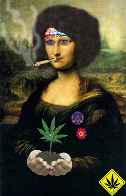 Erva Lisa