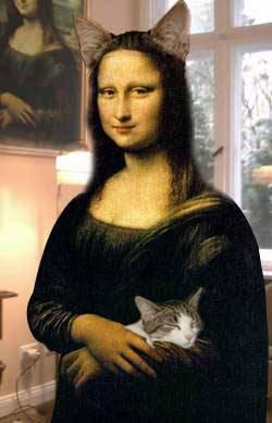 kitten-lisa