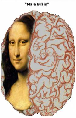mona and our brain