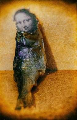 Mona Fisch