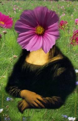 Mona Flower