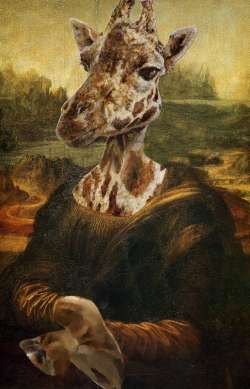 Mona Giraffa