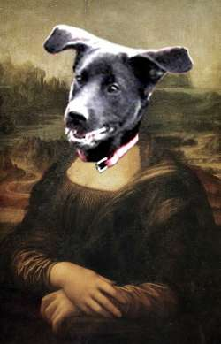Mona Lisa Dog Head