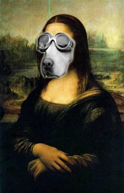 Mona Perra