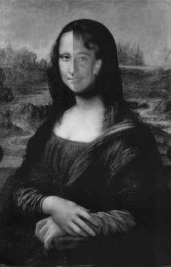 Mona Siamesa