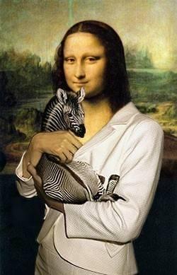 Mona Zebra