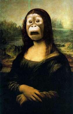 monkeylisa