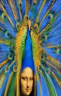 peacocklisa