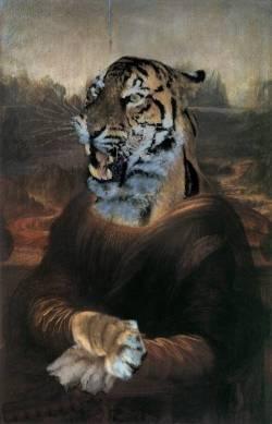 Tiger Lisa